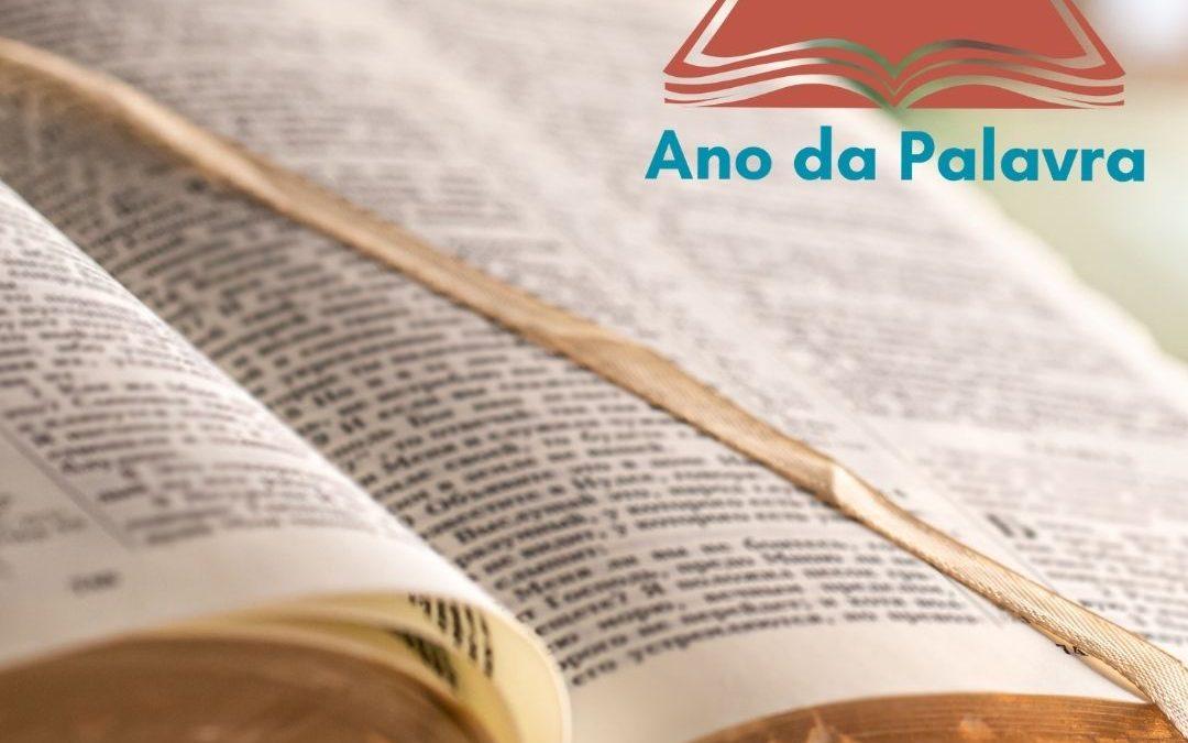 Mês da Bíblia: Paróquias realizam ações e movimentam o Ano da Palavra na Arquidiocese